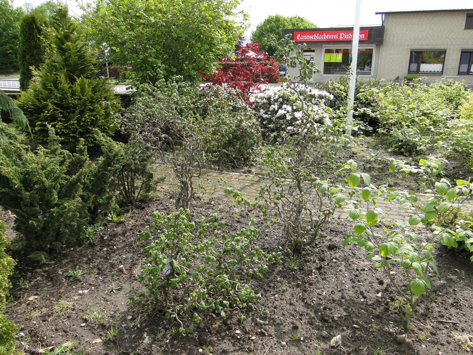 Gartencenter Michael Mohr - Außenanlage Standort Todesfelde
